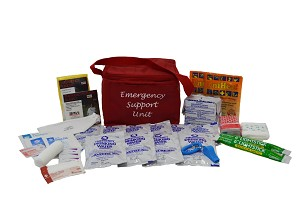 Basic Emergency Support Unit™ / Earthquake Survival Kit