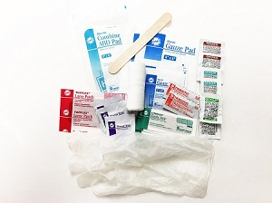 Basic First Aid Kit in Zip Top Bag
